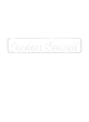 Angleton Youth Heavyweight Sleeve Stripe Hooded Sweatshirt