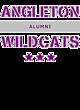Angleton Fan Favorite Heavyweight Hooded Unisex Sweatshirt