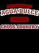 Agua Dulce Fan Favorite Heavyweight Hooded Unisex Sweatshirt