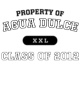 Agua Dulce Holloway Electrify Long Sleeve Performance Shirt