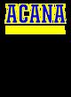 Austin C A N! Academy Heavyweight Sport Tek Adult Hooded Sweatshirt
