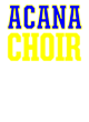 Austin C A N! Academy Holloway Electrify Heathered Performance Shirt
