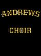 Andrews Ladies' Tri-Blend T-Shirt