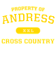 Andress Champion Heritage Jersey Tee
