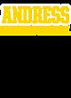 Andress Fan Favorite Heavyweight Hooded Unisex Sweatshirt
