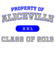 Aliceville Classic Fit Heavy Weight T-shirt