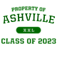 Ashville Fan Favorite Heavyweight Hooded Unisex Sweatshirt