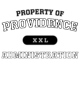 Providence Classic Fit Heavy Weight T-shirt