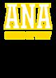 ARMY New Era Original Fit Flat Bill Snapback