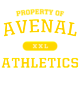 Avenal New Era Tri-Blend Pullover Hooded Sweatshirt