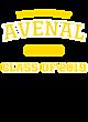 Avenal Ladies Tri-Blend Wicking Tank