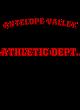 Antelope Valley Fan Favorite Heavyweight Hooded Unisex Sweatshirt