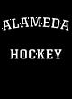 Alameda Holloway Electrify Long Sleeve Performance Shirt