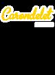 Carondelet District Perfect Tri Sleeveless Hoodie