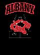 Albany Adult Baseball T-Shirt