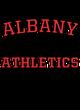 Albany Holloway Prospect Unisex Hooded Sweatshirt
