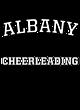 Albany Russell Dri-Power Fleece Hoodie