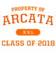 Arcata Womens Vintage Heather Applaud T-Shirt