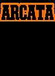 Arcata Ladies Ombre V-Neck Tee