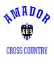 Amador Nike Legend Tee