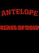 Antelope Fan Favorite Heavyweight Hooded Unisex Sweatshirt