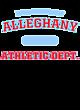 Alleghany Fan Favorite Heavyweight Hooded Unisex Sweatshirt