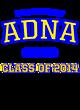 Adna New Era Ladies Tri-Blend Pullover Hooded T-Shirt