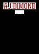 A J Dimond Holloway Electrify Long Sleeve Performance Shirt