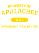 Apalachee Classic Fit Heavy Weight T-shirt