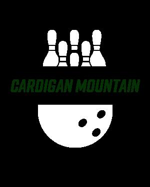 Cardigan Mountain Embroidered Stretch Fleece Beanie
