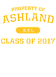 Ashland Tri-Blend Ladies Long Sleeve Hooded T-shirt