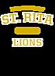 St. Rita Champion Women�s Reverse Weave Crop Hoodie