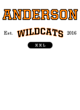 Anderson Champion Heritage Jersey Tee