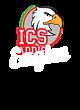 ICS ADDIS Electric Heather Hooded Sweatshirt