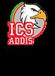 ICS ADDIS Embroidered Womens Qtr Zip Sweatshirt