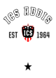 ICS ADDIS Nike Ladies Core Cotton Scoop Neck T-Shirt