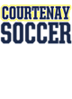 Courtenay Lightweight Hooded Unisex Sweatshirt
