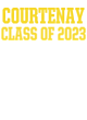 Courtenay Bella+Canvas Unisex Triblend Short Sleeve T-Shirt