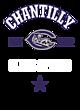 Chantilly Womens Fine Jersey Fashion T-shirt