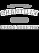 Chantilly Womens Cotton V-Neck T-shirt