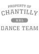 Chantilly Ladies Kinergy 2 Color Long Sleeve Raglan T-Shirt