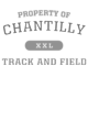 Chantilly Ladies Tri Blend Racerback Tank