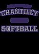 Chantilly New Era Sueded Cotton Baseball T-Shirt