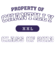 Chantilly Holloway Electrify Heathered Performance Shirt