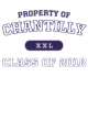 Chantilly Colorblock Competitor T-Shirt