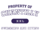 Chantilly Long Sleeve Ultimate Performance T-shirt