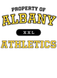 Albany Fan Favorite Heavyweight Hooded Unisex Sweatshirt