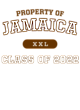 Jamaica Nike Legend Tee