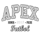 Apex Classic Fit Heavy Weight T-shirt