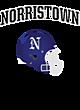 Norristown Fan Favorite Heavyweight Hooded Unisex Sweatshirt